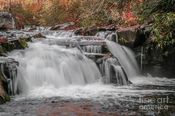 Photograph - Downstream Plunge by Tom Claud