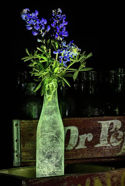 Photograph - Dr Pepper And Bluebonnet Still Life by JC Findley