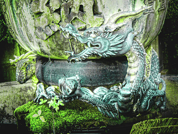 Photograph - Dragon Bowl by Roberto Alamino