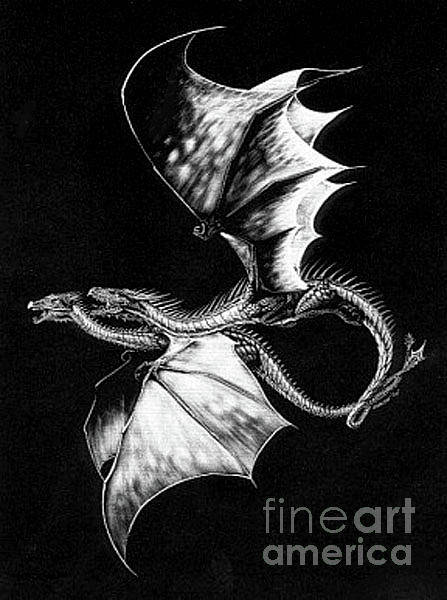 Scratchboard Wall Art - Drawing - Dragon Courtship by Stanley Morrison