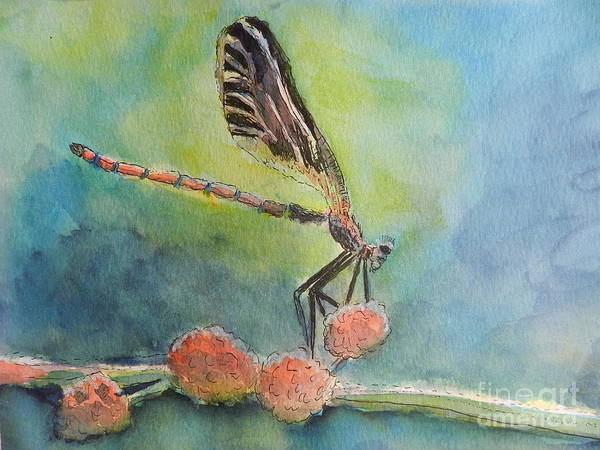 Wall Art - Painting - Dragon Fly by Pamela Meredith