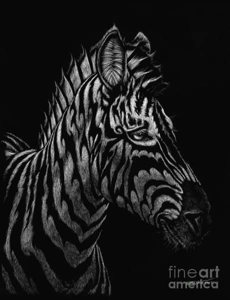 Scratchboard Wall Art - Painting - Dragon Zebra by Stanley Morrison