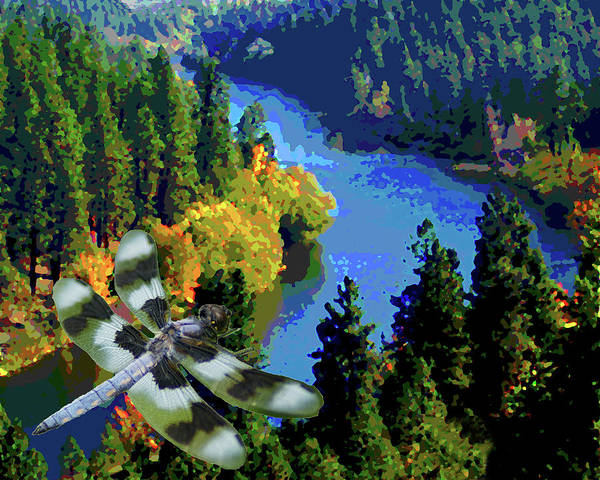 Photograph - Dragonflight Over The Spokane River by Ben Upham III