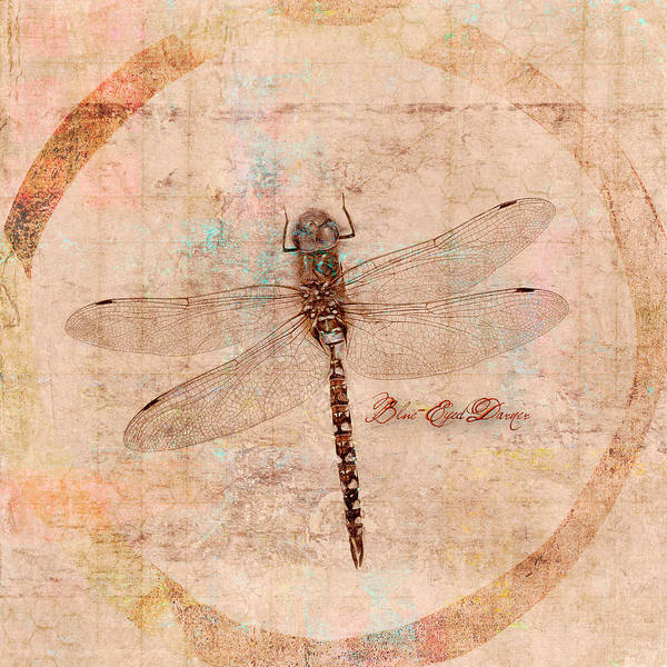 Wall Art - Mixed Media - Dragonfly by Carol Leigh