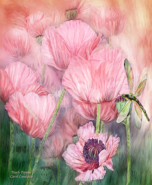Mixed Media - Dragonfly On Peach Poppies by Carol Cavalaris