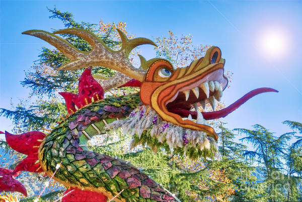 Tournament Of Roses Photograph - Dragons And Serpents 1 by David Zanzinger