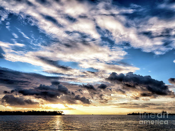 Photograph - Drama In Key West by John Rizzuto