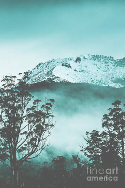 Tree Top Photograph - Dramatic Dark Blue Mountain With Snow And Fog by Jorgo Photography - Wall Art Gallery