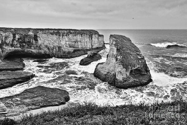 Wall Art - Photograph - Dramatic View Of Shark Fin Cove by Jamie Pham