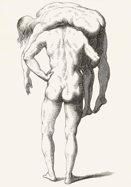 Wall Art - Drawing - Drawing By Luca Signorelli Of Back View by Vintage Design Pics