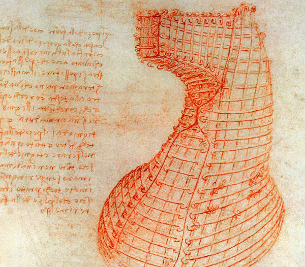 Drawing - Drawing Of The Ironwork Casting Mould For The Head Of The Sforza Horse by Leonardo Da Vinci