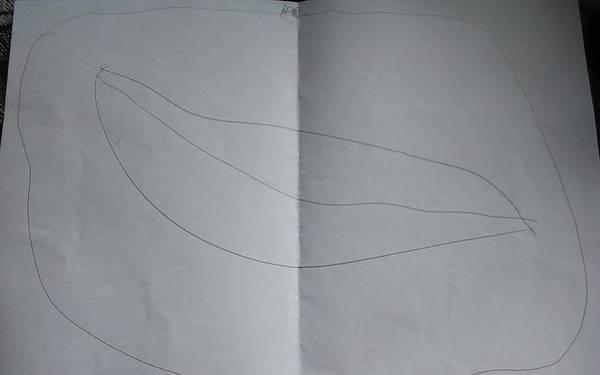 Drawing Drawing - Drawing by Sari Kurazusi