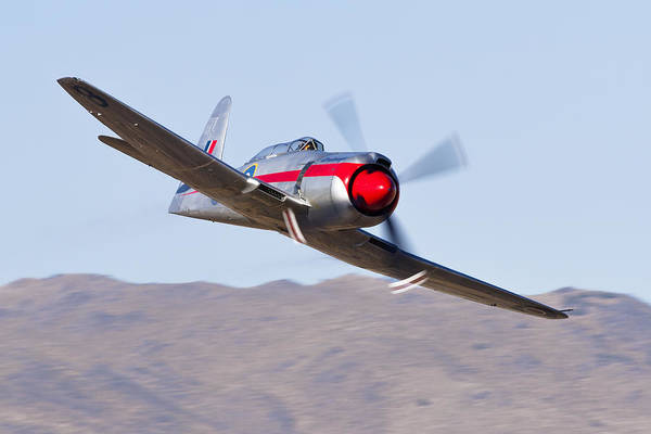 Hawker Sea Fury Photograph - Dreadnought In The Valley by Rick Pisio