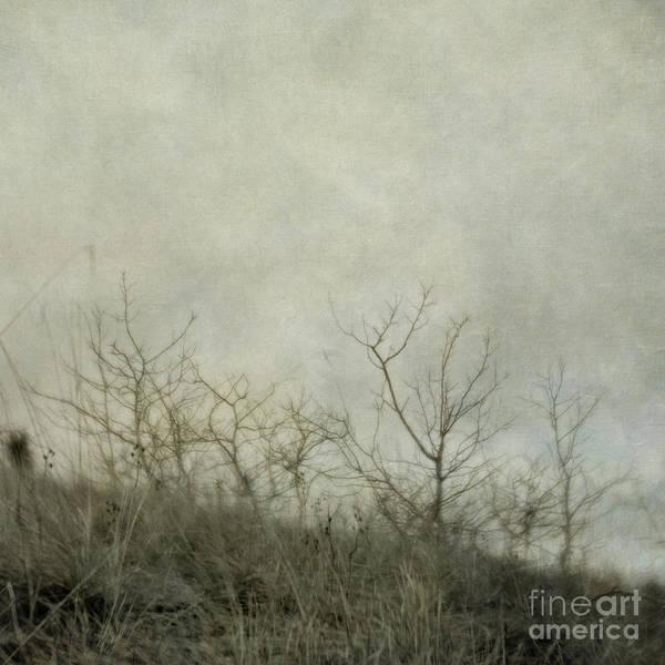 Wall Art - Photograph - Dream 2 by Priska Wettstein