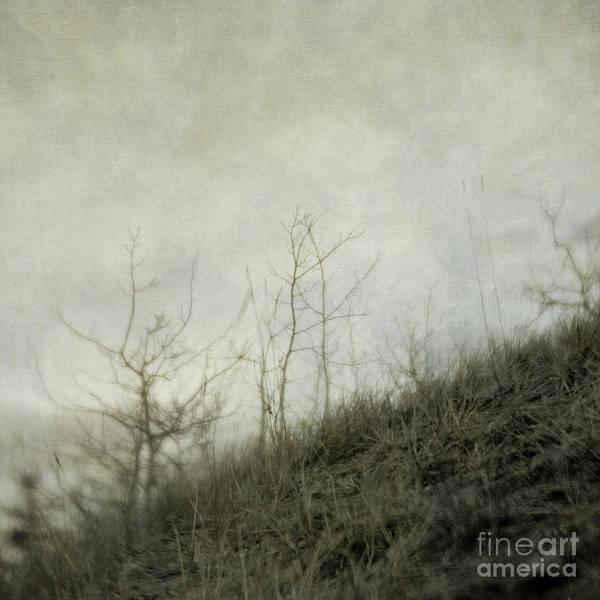 Wall Art - Photograph - Dream 3 by Priska Wettstein