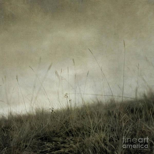 Wall Art - Photograph - Dream 4 by Priska Wettstein