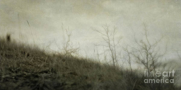 Wall Art - Photograph - Dream 5 by Priska Wettstein