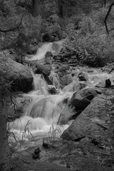 Photograph - Dream Cascades 2 Bw by Dimitry Papkov