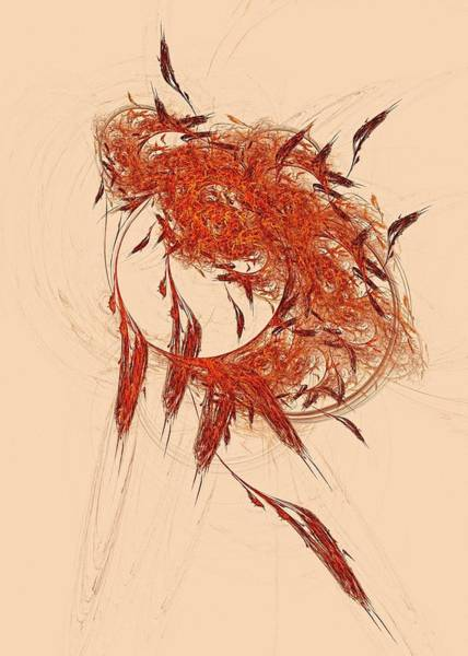 Digital Art - Dream Catcher 3x5 by Doug Morgan