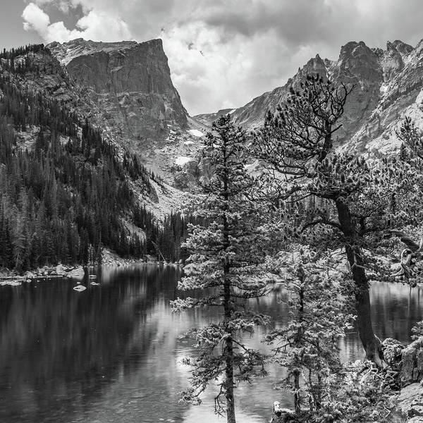 Wall Art - Photograph - Dream Lake And Hallet Peak - Colorado Mountain Landsdcape Monochrome - Square Format by Gregory Ballos