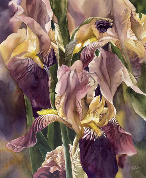 Painting - Dream Of The Iris by Alfred Ng