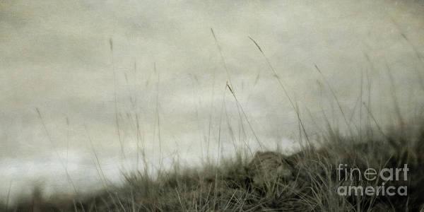 Wall Art - Photograph - Dream by Priska Wettstein