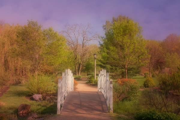 Photograph - Dream To The Other Side Of Spring by Angie Tirado