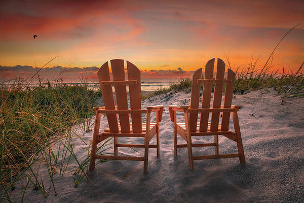 Muscovy Photograph - Dreaming By The Sea by Debra and Dave Vanderlaan