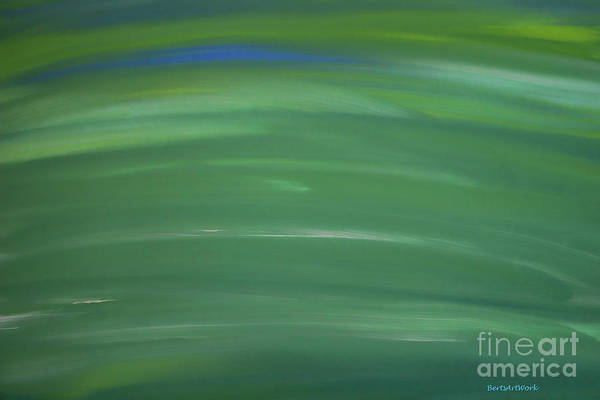 Photograph - Floating In Green by Roberta Byram