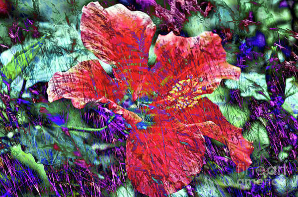 Digital Art - Dreaming In Red by Silva Wischeropp