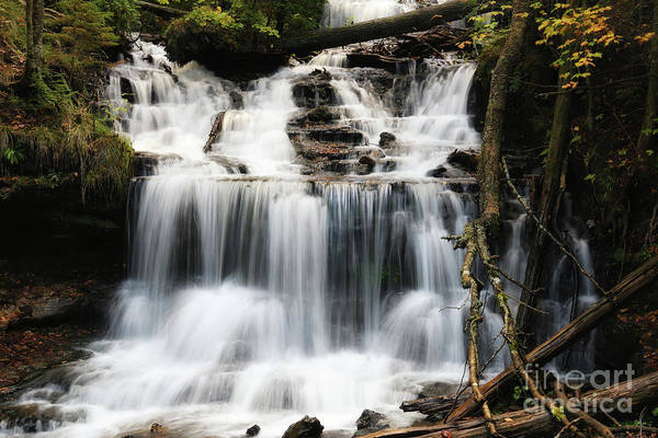 Photograph - Dreaming Of Wagner Falls by Rachel Cohen