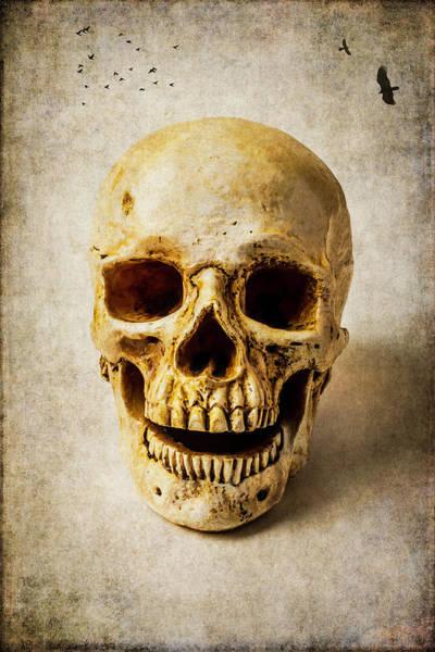 Wall Art - Photograph - Dreaming Skull by Garry Gay