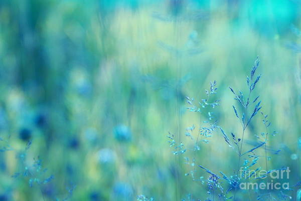 Aqua Blue Digital Art - Dreamland - 02-2 by Variance Collections