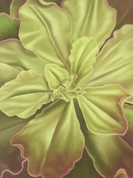 Wall Art - Painting - Dreams Of Green by Gema Lopez