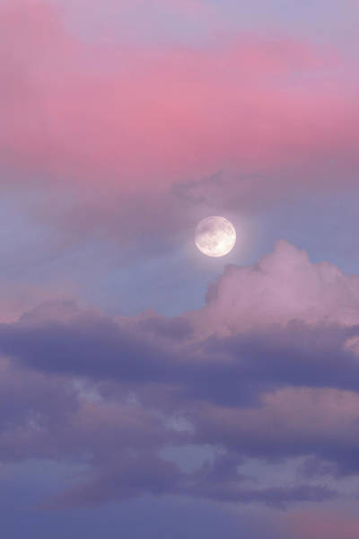 Full Moon Wall Art - Photograph - Dreamy by Chad Dutson