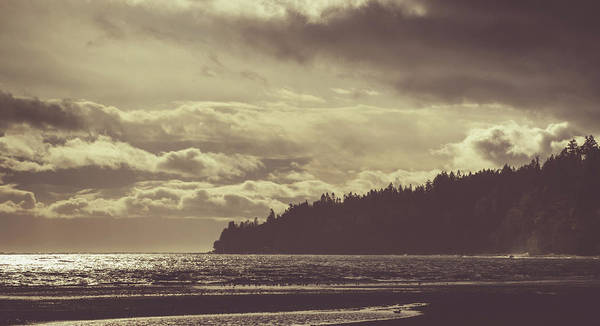 Photograph - Dreamy Coastline by Trance Blackman
