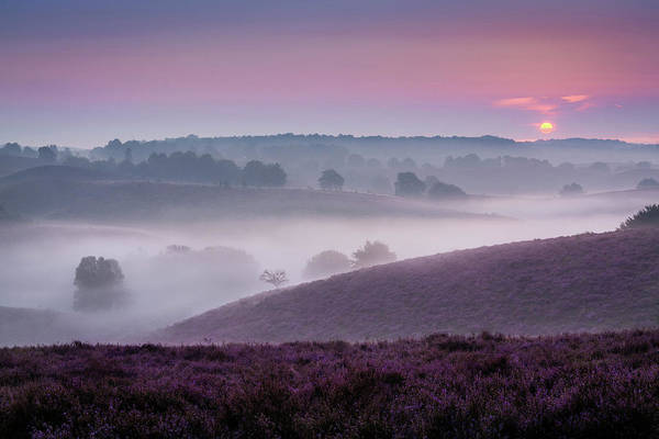 Photograph - Dreamy Morning by Mario Visser