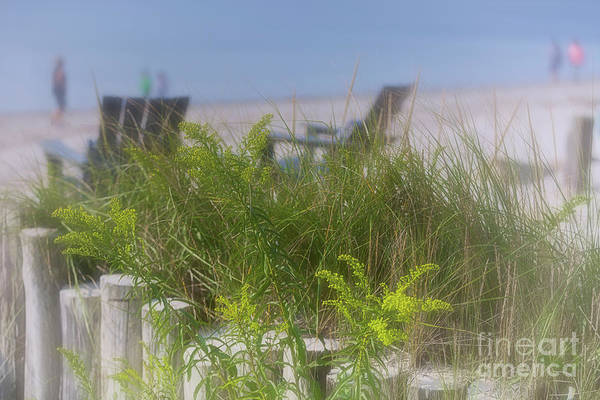 Photograph - Dreamy Morning Walk On The Beach by Mary Lou Chmura