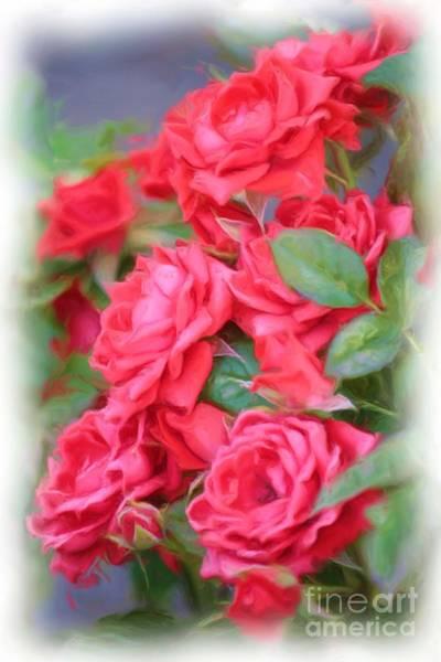 Photograph - Dreamy Red Roses - Digital Art by Carol Groenen