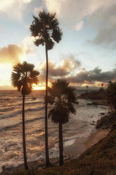 Photograph - Dreamy Sunset by Cliff Wassmann