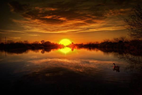 Silhoutte Photograph - Dreamy Sunset II by Saija  Lehtonen