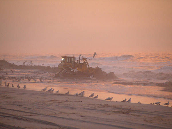 Photograph - Dredge Cat 1 by  Newwwman