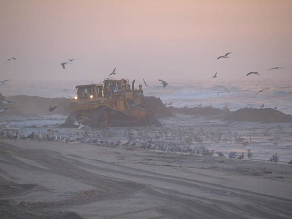 Photograph - Dredge Cat 3 by  Newwwman