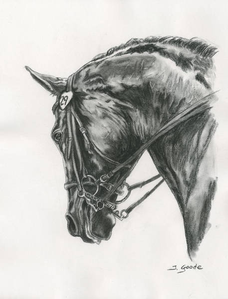 Equine Drawing - Dressage Horse by Jana Goode