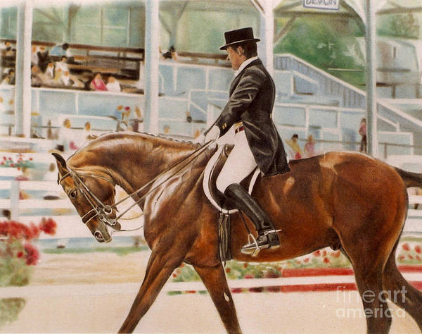 Warmbloods Drawing - Dressage Rider by Gail Dolphin