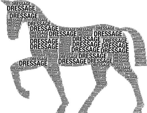 Digital Art - Dressage Word Art by Alice Gipson