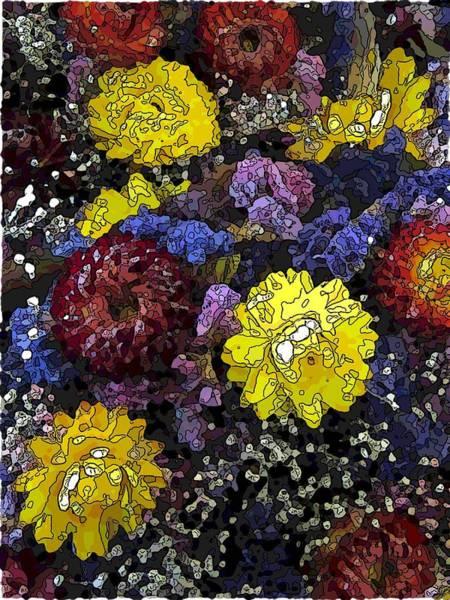 Cheery Digital Art - Dried Delight 3 by Tim Allen