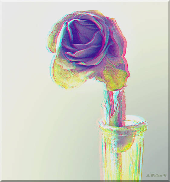 Anaglyph Photograph - Dried Rose - Use Red-cyan 3d Glasses by Brian Wallace