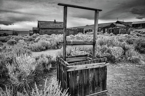 Photograph - Dried Up Dreams In Black And White by Lynn Bauer