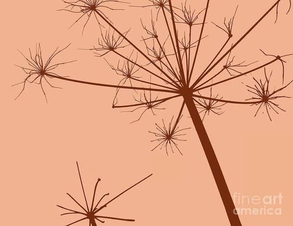 Donegal Digital Art - Dried Wildflower by Eddie Barron